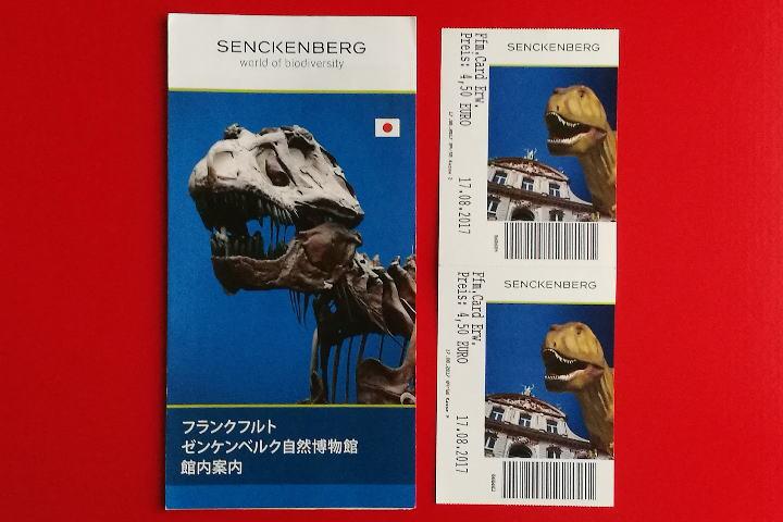 ゼンケンベルク自然史博物館 日本語パンフレット チケット