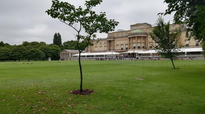 バッキンガム宮殿庭園