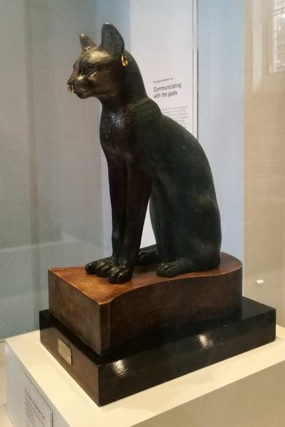 ゲイヤー・アンダーソンの猫