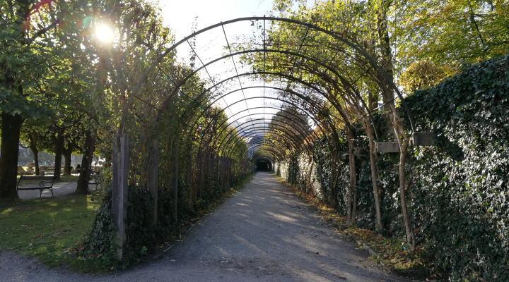 ミラベル宮殿・庭園 バラのアーチ