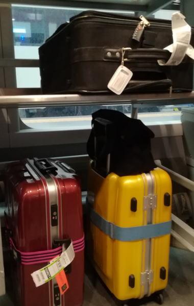 レオナルド・エクスプレス 車内スーツケース置き場