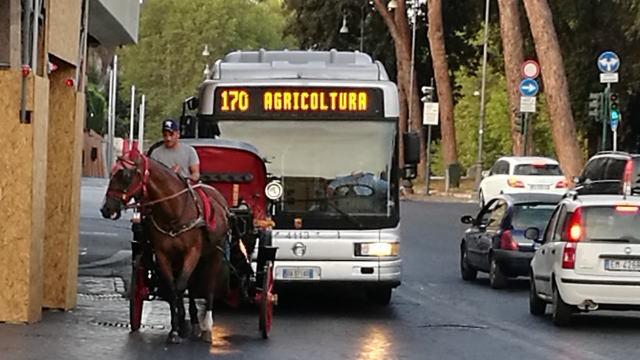 ローマ バス